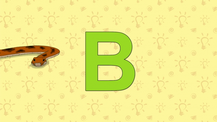 Boa. English ZOO Alphabet - letter B