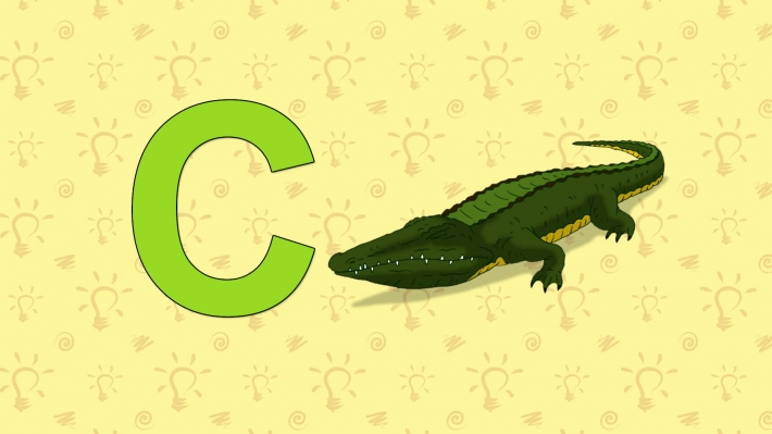 Crocodile. English ZOO Alphabet - letter C