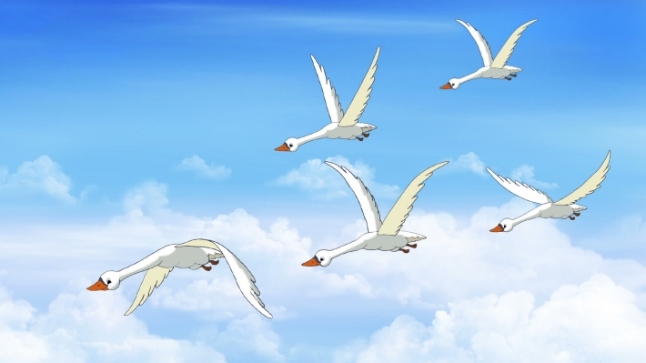 Flock of Swans Flies in the Sky