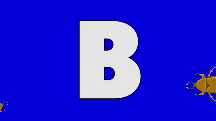 Letter B and Beetle (background)