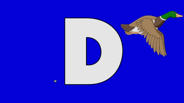 Letter D and Duck (background)
