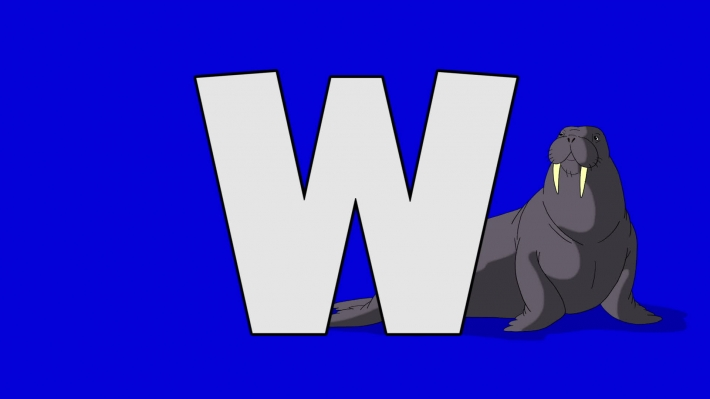 Letter W and  Walrus  (background)