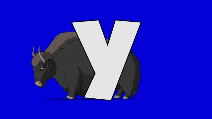 Letter Y  and  Yak  (background)