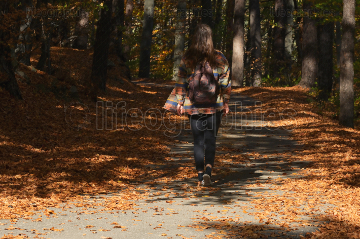 A Young Girl With A Backpack Is Walking Through A Forest