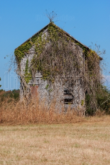 Abandoned Farmhouse Overgrown With Vines Sits In Georgia Field