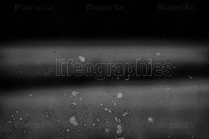 Abstract background with scratch