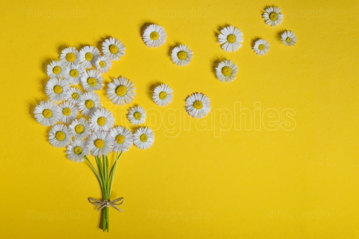 Abstract daisy flower bouquet