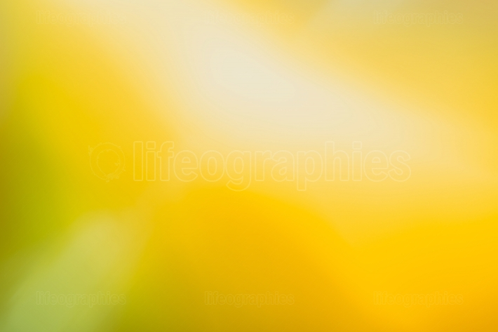 Abstract gradient green orange background
