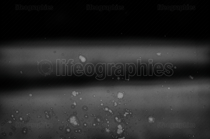 Abstract monochrome background with scratch
