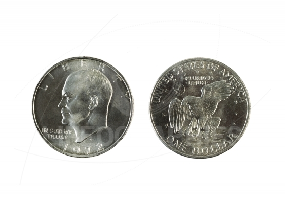 American Silvers Dollars on White