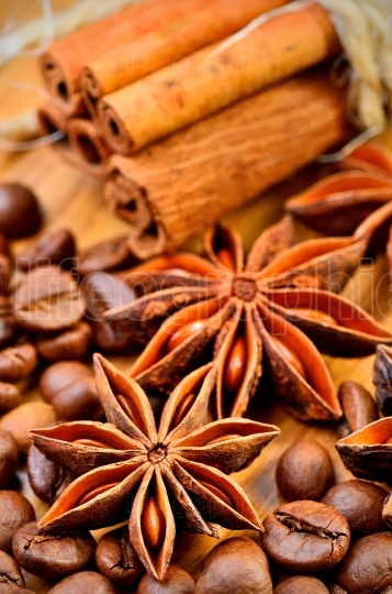 Anise, cinnamon and coffe beans
