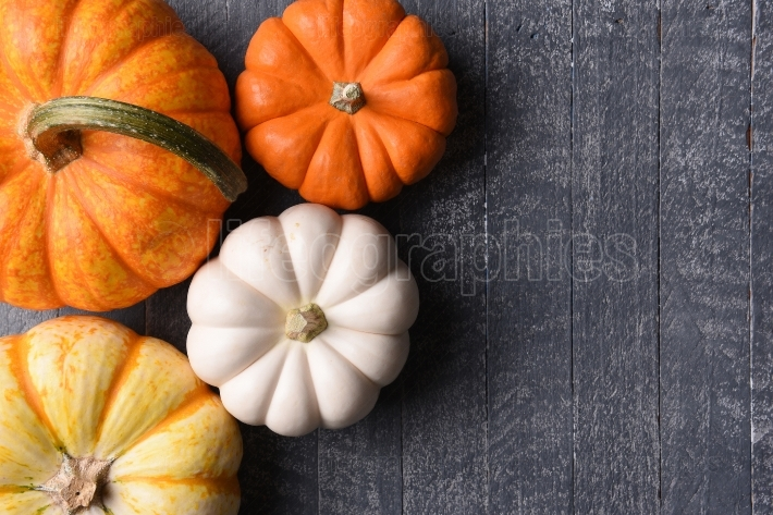 Assorted decorative pumpkins on rustic wood background