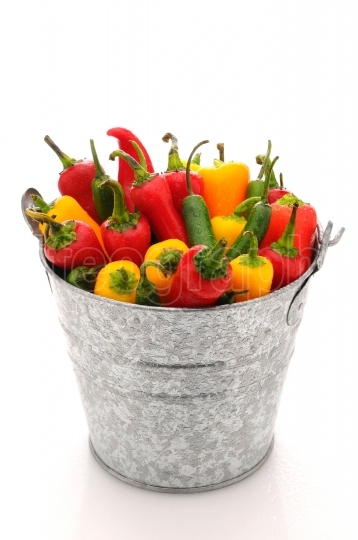 Assorted peppers in pail