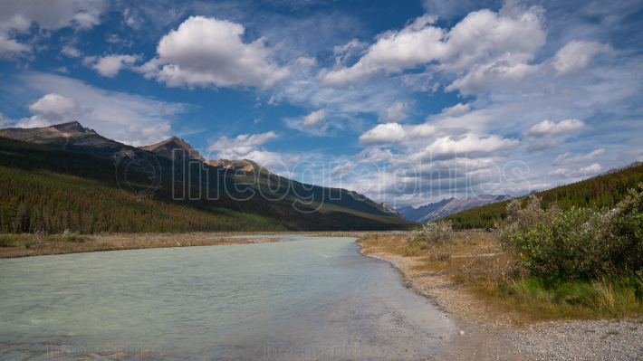 Athabasca River, Jasper National Park, Rocky Mountains, Alberta,