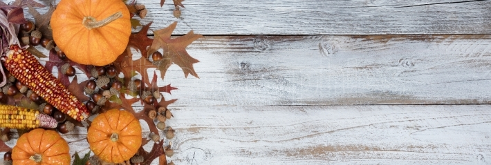 Autumn acorns, pumpkins, corn and leaves on rustic white wood ba
