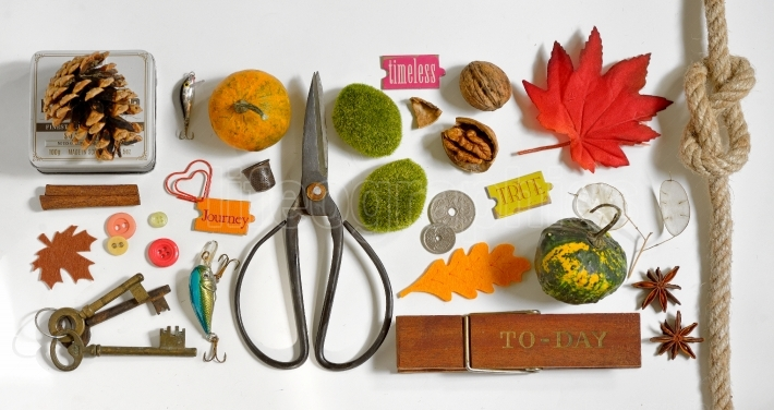 Autumn Collection  Mockup objects