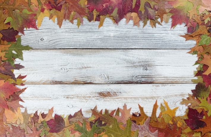 Autumn foliage background for seasonal holidays on white rustic