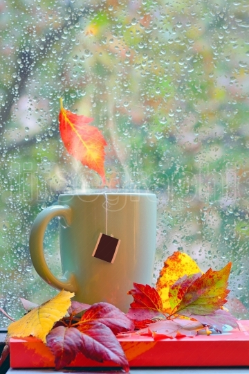 Autumn rainy window with hot tea