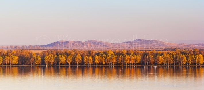 Autumn Trees Mirroring On Danube river and Dobrogea mountains in background