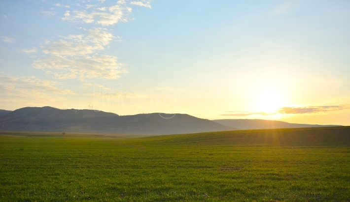 Background of green field with blue sky at sunset