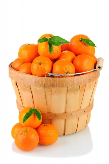 BAsket of Clementines