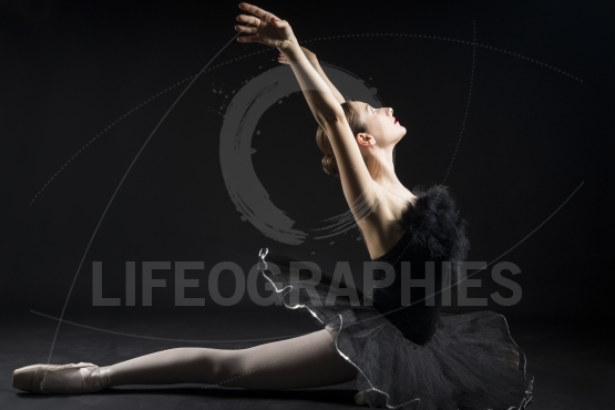 Beautiful ballerina in the role of a black swan