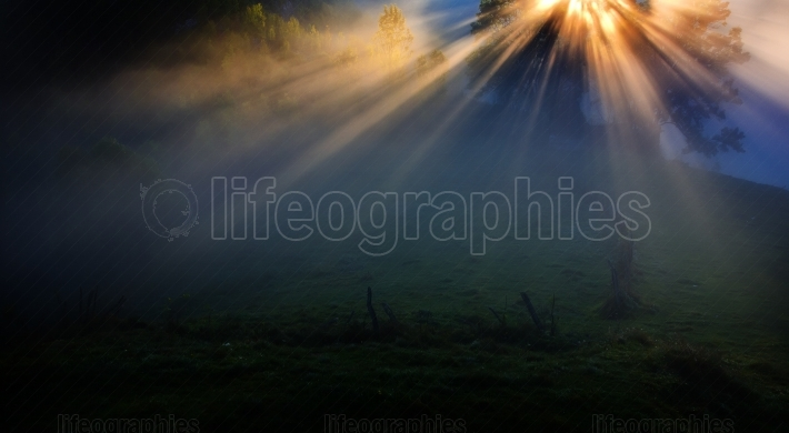 Beautiful foggy morning int he mountains with sunlight passing t