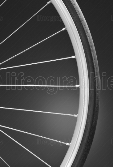 Bicycle Wheel Black and White Closeup