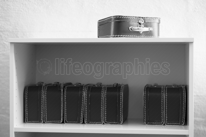 Black and white toy cases on the shelf background