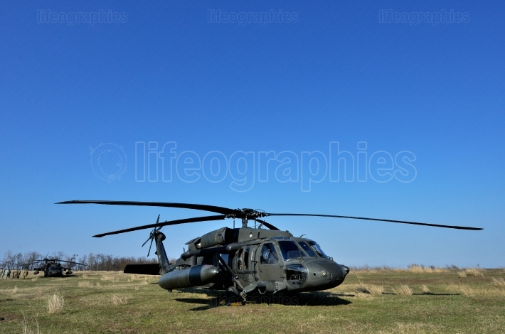 BLACK HAWK fighting helicopter