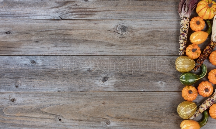 Border of pumpkins and gourds on rustic wood for Autumn holiday