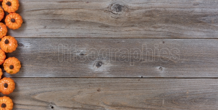 Border of pumpkins on rustic wood for Autumn holiday background