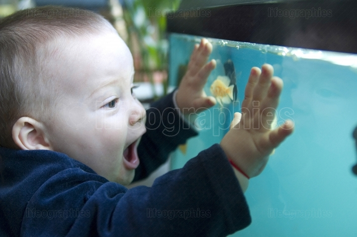 Boy and aquarium