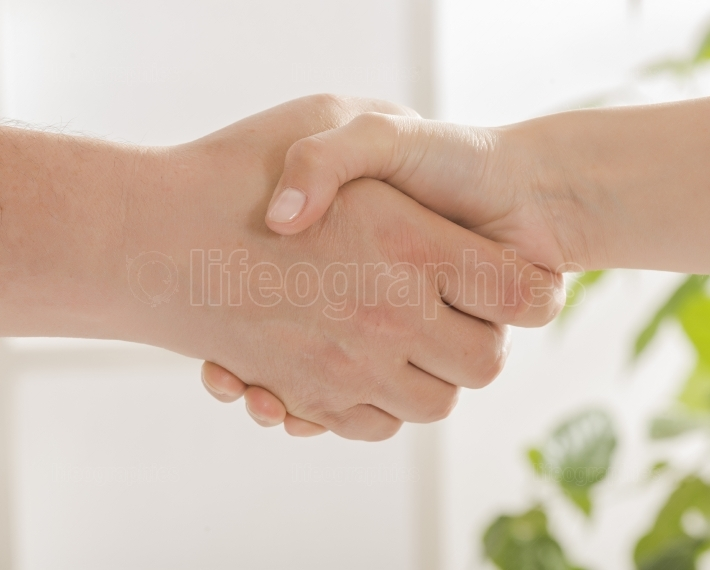 Businessman and doctor shaking hands in office