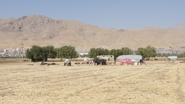 Camp of nomads, Iran, Asia