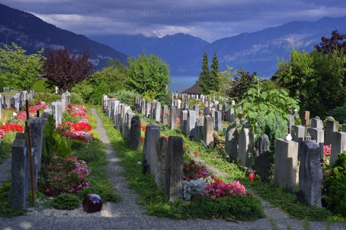 Cemetery in Thun. Switzerland