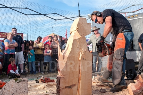 Chainsaw sculptor carves dog out of wood
