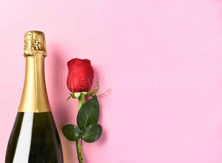 Champagne Bottle Single Rose