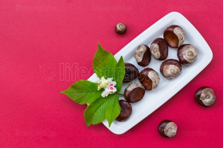 Chestnuts on white plate