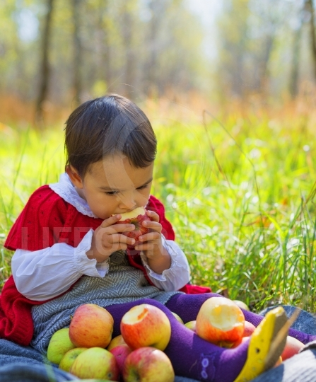 Child with red apples sitting on leaves in autumn park