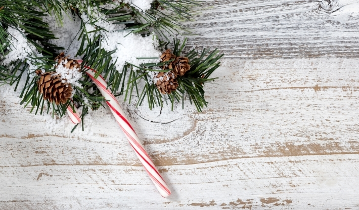 Christmas candy cane ornament hanging from snowy rough fir tree