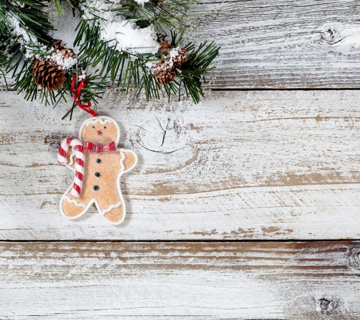Christmas cookie ornament hanging from snowy rough fir tree bran