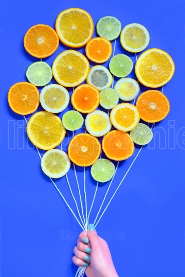 Citrus  slices fruits concept