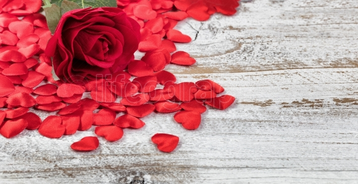 Close up of a single red rose and heart shapes
