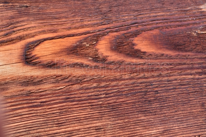 Close up view of wooden texture