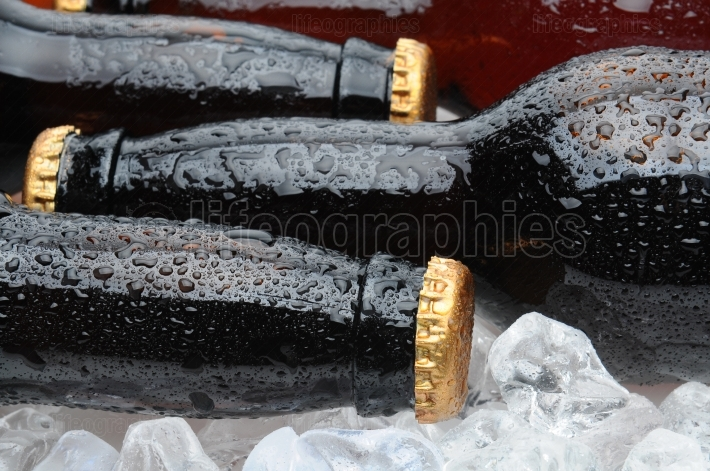 Closeup of Brown Beer Bottles Laying in Ice