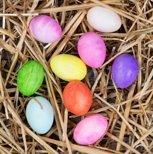 Colorful eggs for Easter holiday on natural straw and rustic woo