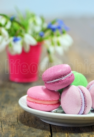 Colorful macaroons and spring flowers