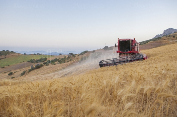 Combine at turning maneuver on mountain range area, Antequera, M
