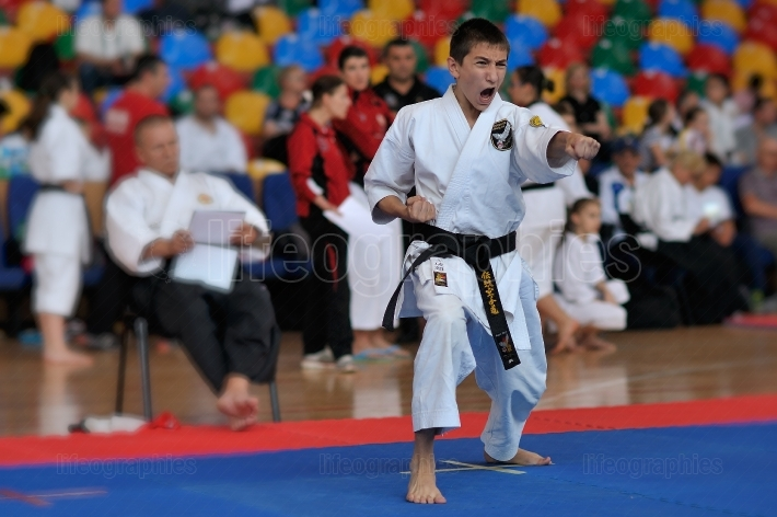 Contestants participating in the European Karate Championship Fudokan